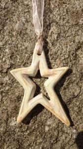 Halsband stjärna